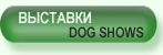 Выставки/Dog shows
